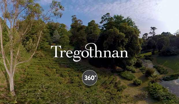 Tregothnan Tea Plantaion 360