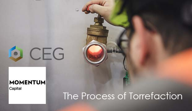 CEG - The Process of Torrefaction